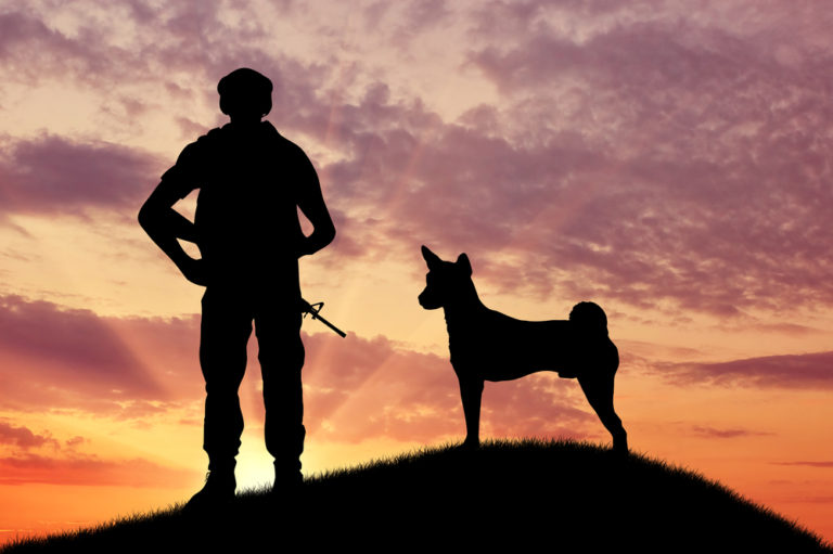 silhouette of a soldier and a dog standing on hill with the sunset in the background