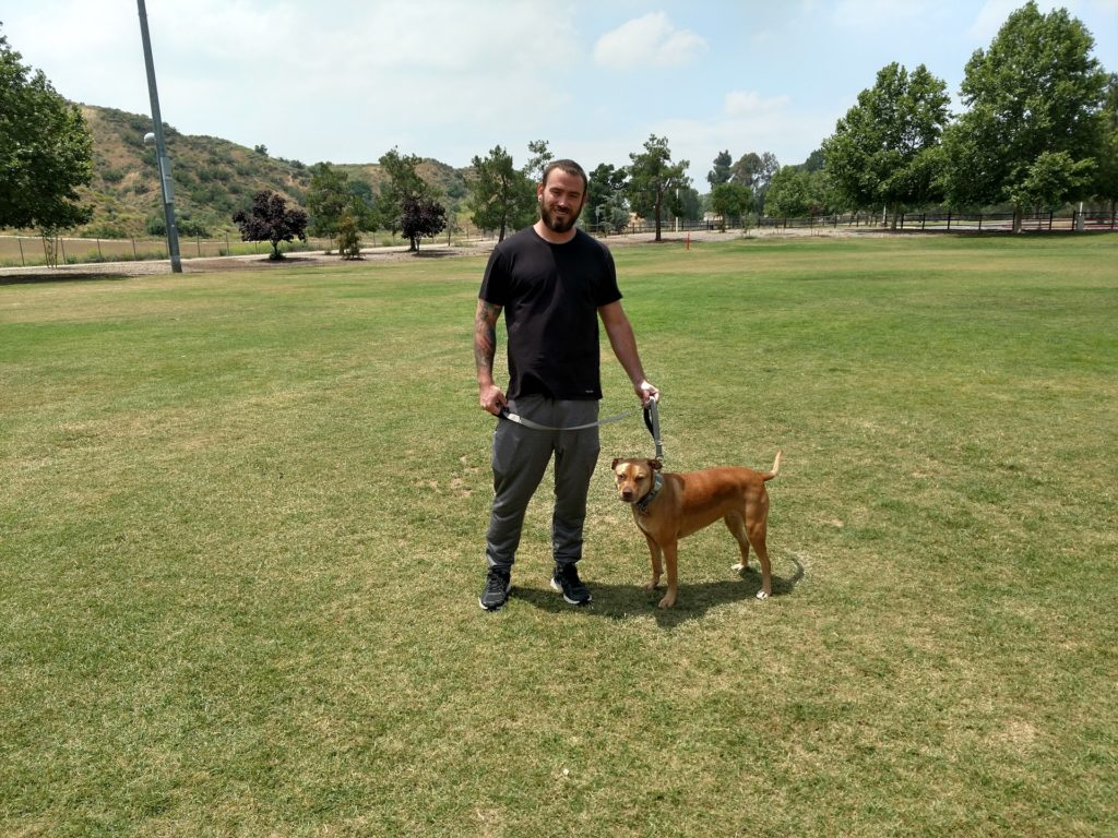 man and his trained dog standing on the grass in the middle of the field